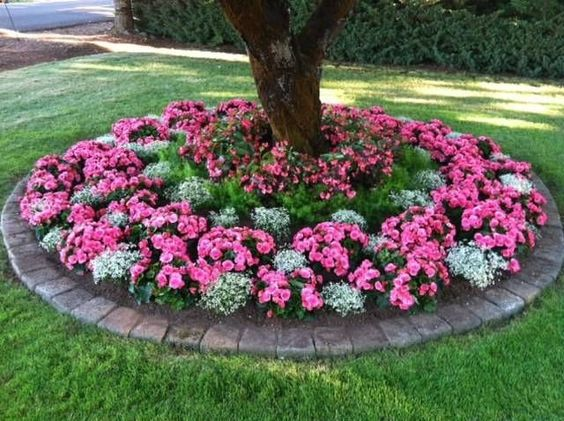 Shade plants and border for under the trees in the front for Front yard flower beds pictures