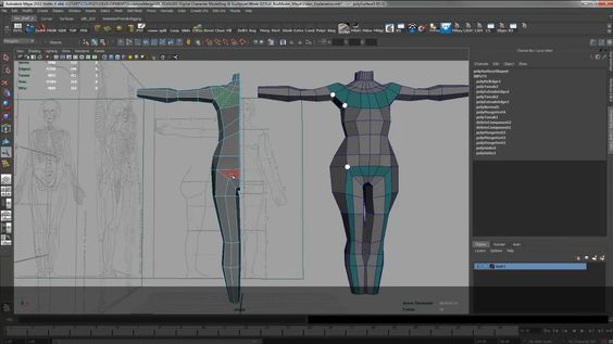 Kim Edwards presents a 101 video tutorial to learn how to create a 3D Torso with references in Maya https://vimeo.com/73361998