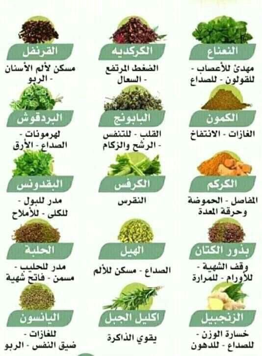 Pin By Sawsan Mtp On الأعشاب وفوائدها Health Facts Food Health Food Health Fitness Nutrition
