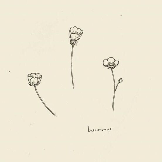 Minimalist Tattoo Meaning Minimalisttattoos Buttercup Tattoo Minimalist Tattoo Tiny Tattoos