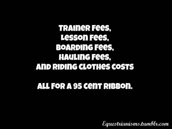 So freaking true.... what do ribbons really mean? Credits: Equestrianisms.tumblr.com