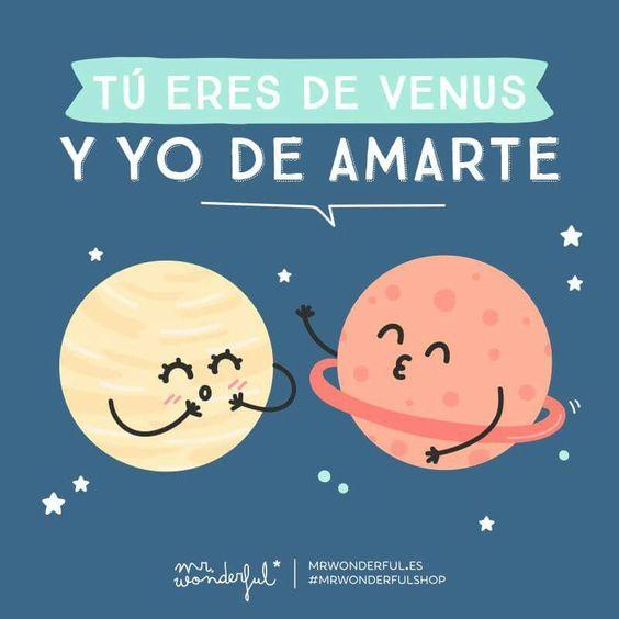Venus y amarte. Mr. Wonderful