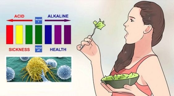 The acidity level of any substance is measured by its pH value. Water has a pH near 7, which is neutral. Substances which have pH larger than 7 are considered alkaline, and those under 7 are acids. Scientists have found many benefits of alkaline foods. This is not surprising, as the pH of our blood...
