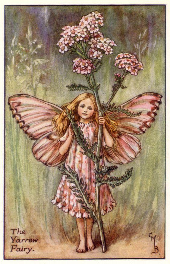 Flower Fairies - Cicely Mary Barker - 1925: