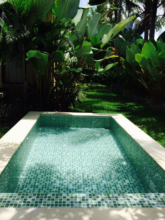 Pinterest the world s catalogue of ideas for Garden plunge pool