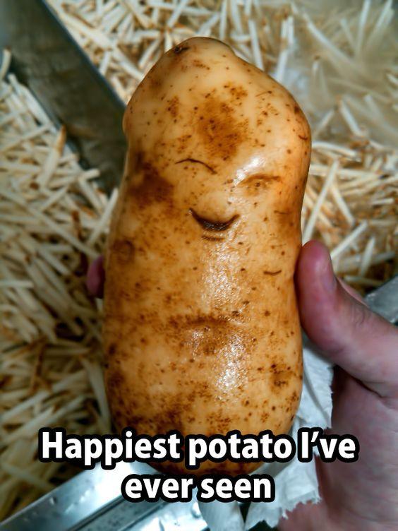Cutest Potato Ever