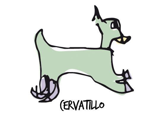 Cervatillo, Producciones Pantuás, Diseño Gráfico, Elena Povo