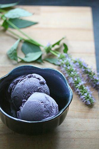 blueberry icecream