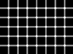 quantos pontos pretos