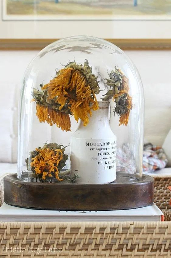 Simple fall home decor ideas start with little bits of color and texture. Ease into fall with cozy plaids and seasonal vignettes. #fallcolors #fallvignettes #driedflowers #seasonaldecorating #falldecorating #vintagedecor #howtocreateavignette