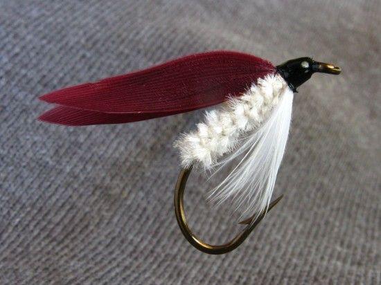 62)-Cardinal