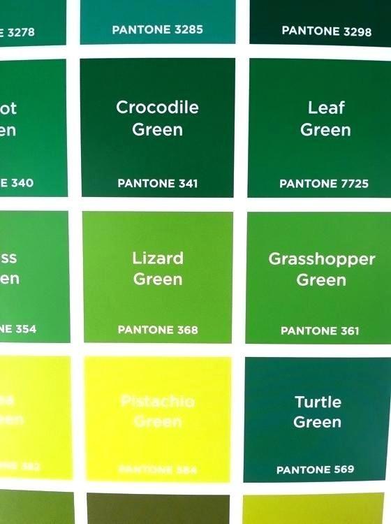 Grasshopper Green Light Green Paint