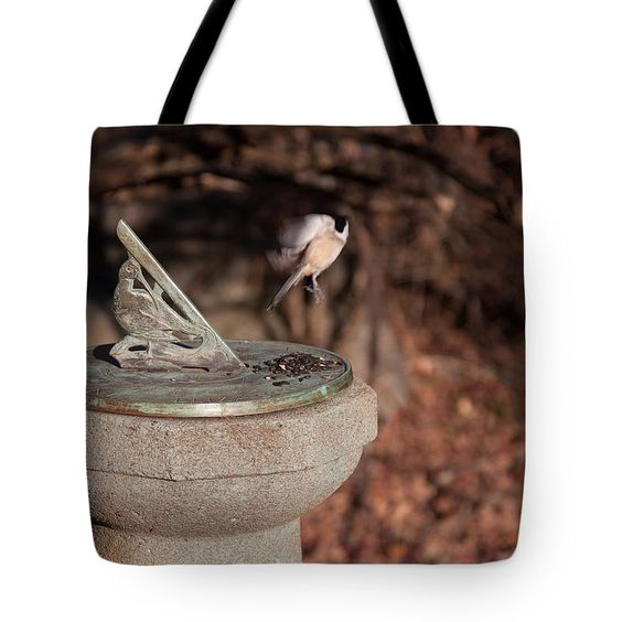#jefffolger Tote Bag featuring the photograph Time Flies by Jeff Folger