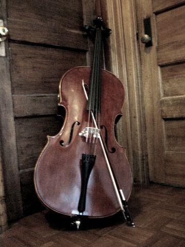 cello in the closet