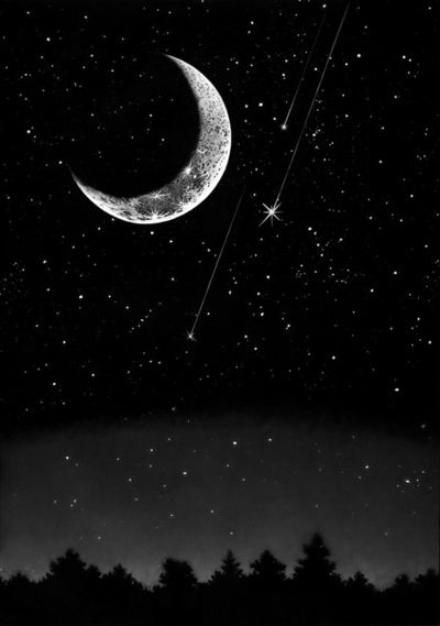 starlight moon bright shooting stars bring wishes in the