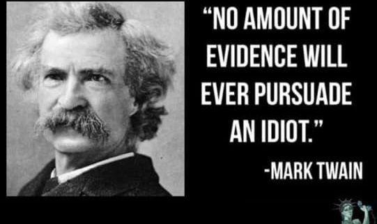 Mark Twain No Amount Of Evidence Will Ever Persuade An Idiot Mark Twain Quotes Mark Twain Quotes Life Mark Twain