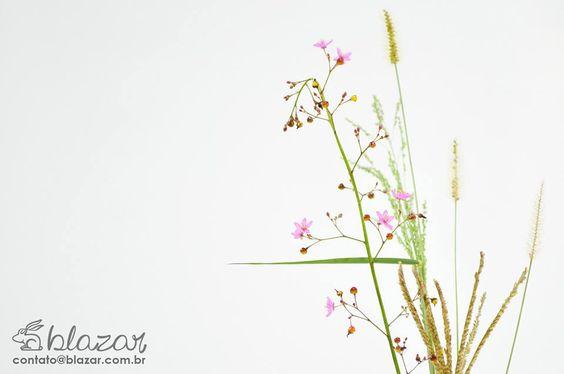 Fotografia de objetos em estúdio