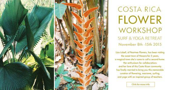 flowerworkshop_peartreeWeb