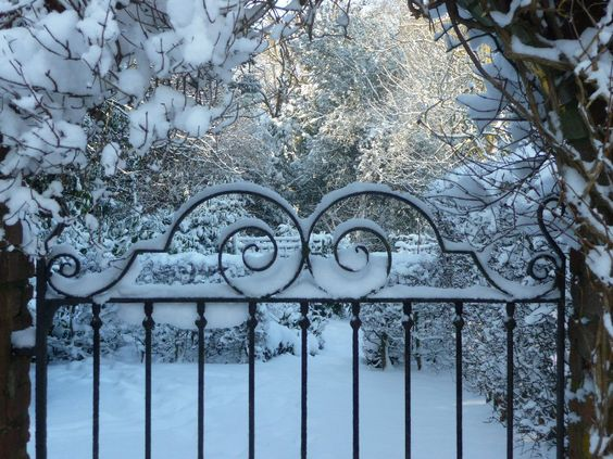Winter garden.: Winter Scene, Favorite Places Spaces, Secret Garden, Garden Gates, Winter Garden, Winter Gate, Iron Fence, Snowy Gates, Iron Gates