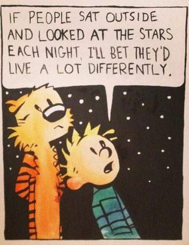 A little wisdom from Calvin + Hobbes