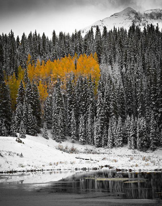 ✮ Winter and Autumn collide on Priest Lake, near Telluride, Colorado