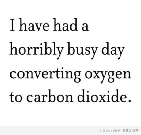 :): Giggle, Converting Oxygen, In Exhausted, My Life, Funny Stuff, Hard Work, Horribly Busy, Carbon Dioxide