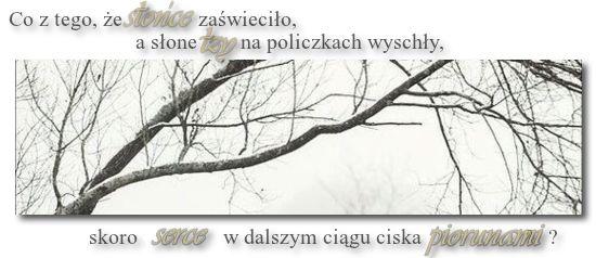 Polanka    - Page 2 E86e87293e66b4c6840f58833d2c5cbd