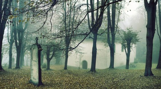 Dark Wood, Wallpaper, Cemetery