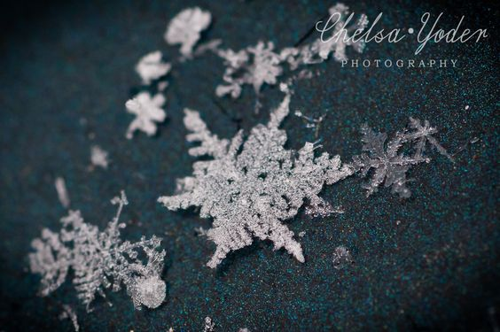 beautiful real snowflake pictures | These were all taken with a Nikon 60mm macro lens. All the flakes were ...