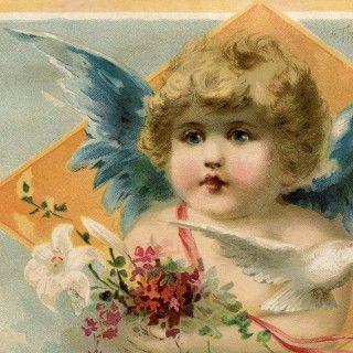 Lovely Blue Wings Angel Image!