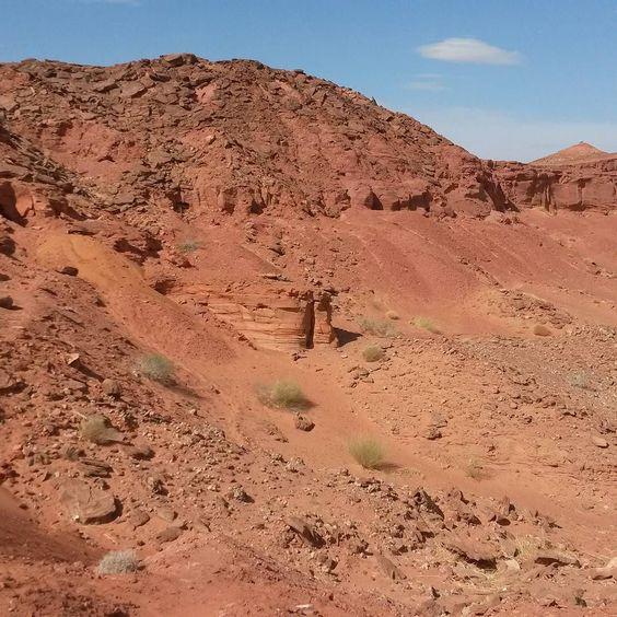 The Kem kem #Cenomanion #Cretaceous #dinosaur bearing beds #Morocco / Algeria border