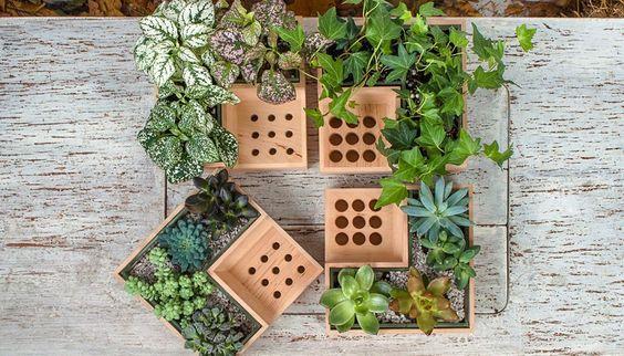 interesting planter design
