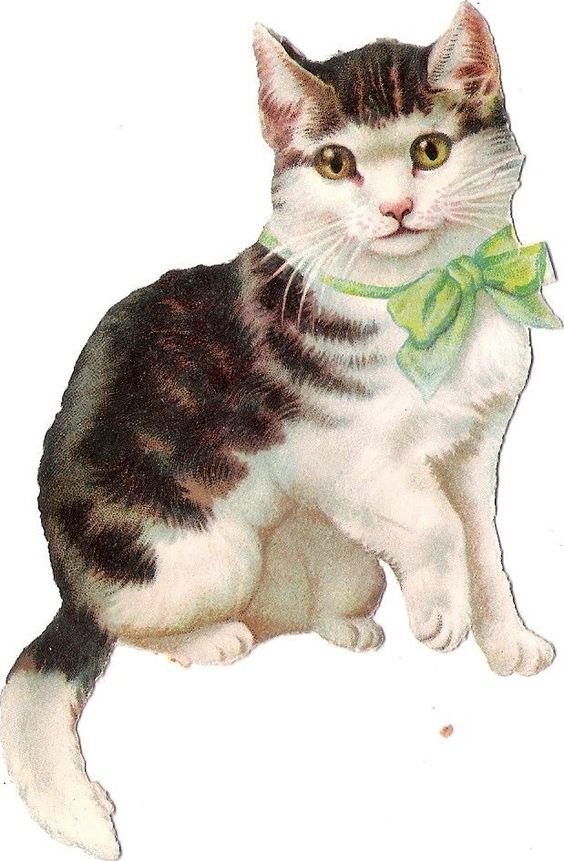 Oblaten Glanzbild scrap die cut chromo Katze  11,5cm cat tiger kitten Schleife: