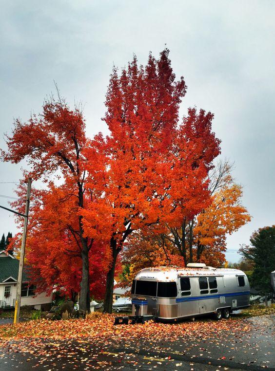 #fallcolor #bayfieldwi #oldrittenhouseinn