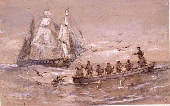 """Sir Oswald Walters Brierly (1817-94), """"Off Cape Horn, 5 May"""", dated 1868 HMS 'Galatea' on the left, a ship's boat in the right foreground. Men in the ship's boat, including HRH the Captain, pulling in an albatross. ."""