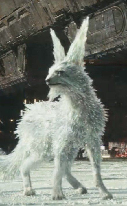 Meet the Mysterious Crystal Foxes of Star Wars: The Last Jedi