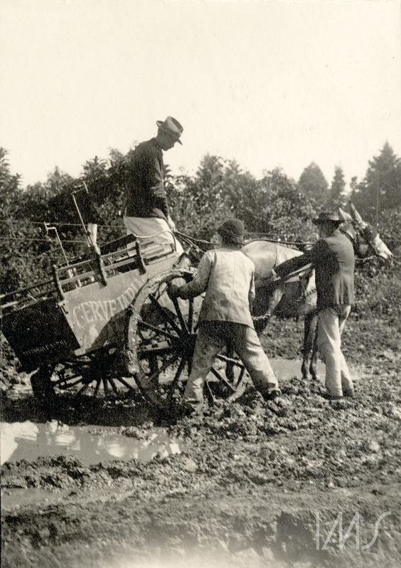 Carroça de cervejaria atolada na lama