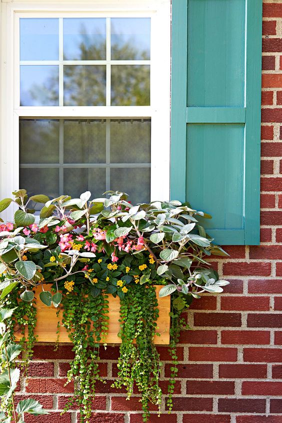 window-brick-house-plant-box-9e84f6d4