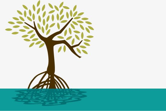 vector mangrove mangrove forest seaside anti cancer png and vector ilustrasi alam ilustrasi alam vector mangrove mangrove forest