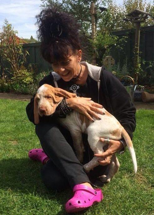 Baby Bax con zia Elena appena arrivato a casa, GBR, 2014