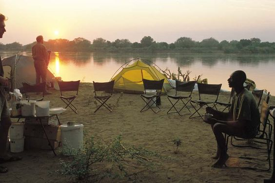 Safari, Reisen, Wandern, Tierwelt Afrika - WIGWAM-Tours