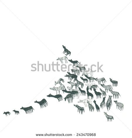 An ink illustration of a pack of wolf animals, wolves or dogs running isolated on white background - stock photo