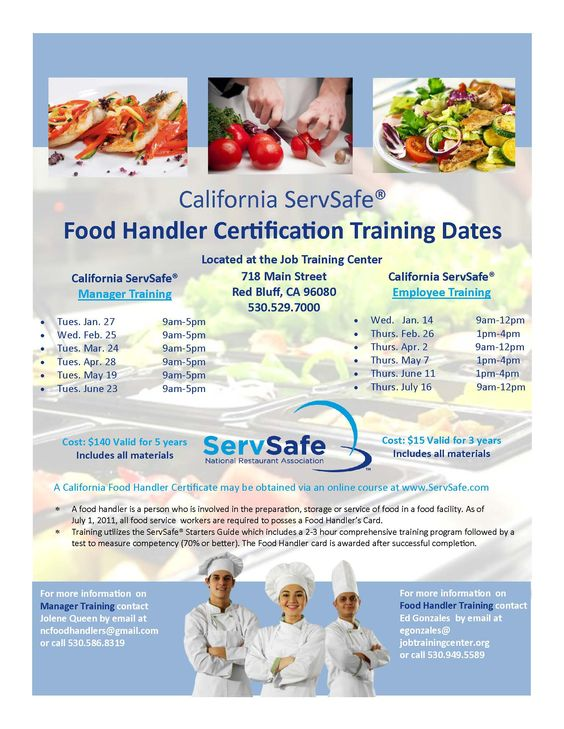 ServSafe Food Handler Card Flyer For Parents Pinterest Food - food handlers answers