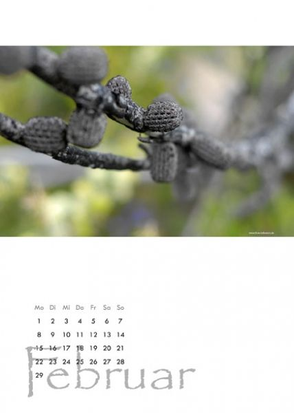 "Kalender 2016 ""Wildblumenblüte in West-Australien"""