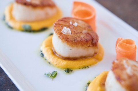 The earthy sweetness of carrots and delicate pine notes of marjoram complement the briny scallops.