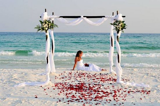 A Beach Wedding For Summer beach wedding-red rose