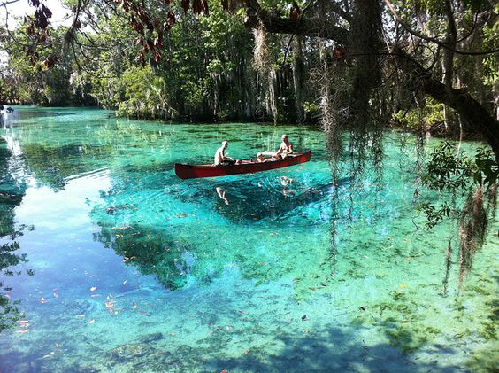 Three Sisters Springs Crystal River Fl The Bucket List