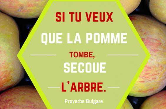 Proverbe primeur