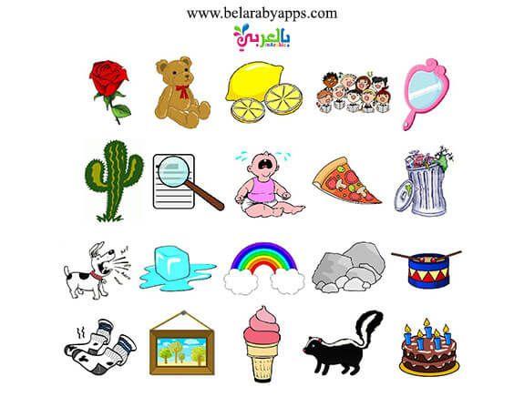 انشطة عن الحواس الخمس للأطفال Sorting Activities Infant Activities Activities