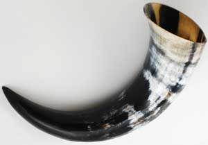 Ceremonial Horn